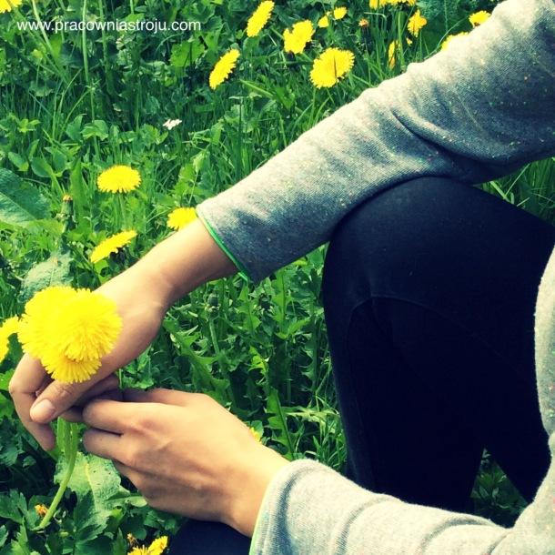 3 zapach trawy