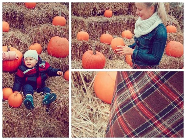 pumpkin mix 3